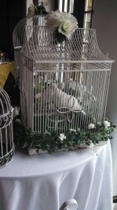 unique wedding doves in a vintage cage